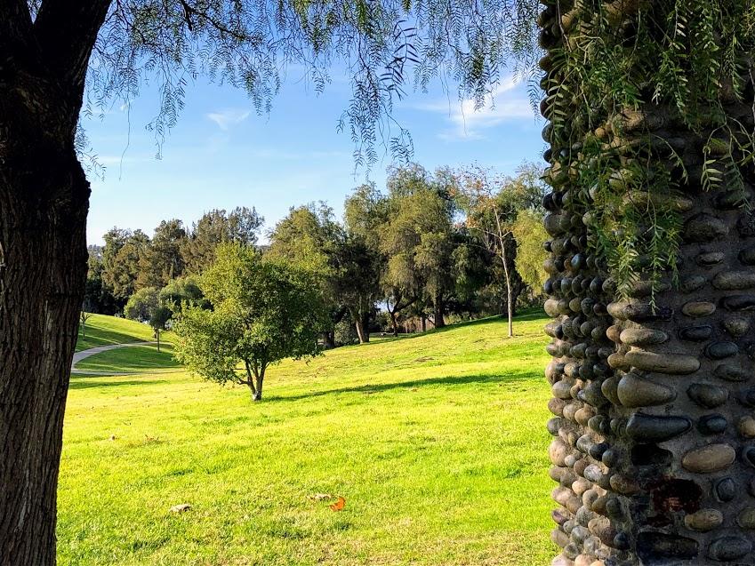 Guajome regional park grassy picnic area