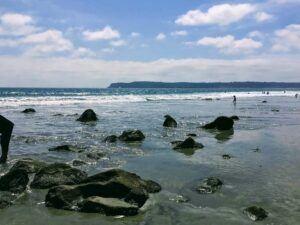 Coronado Island Beach webcam