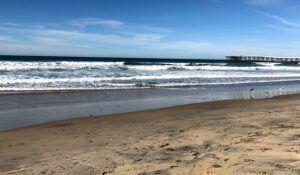 Pacific Beach Crystal Pier wave webcam