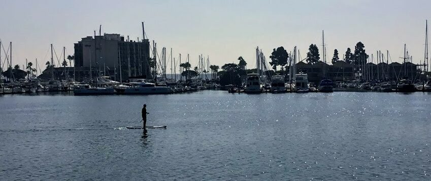 San Diego Bay Paddleboarder san diego beaches open