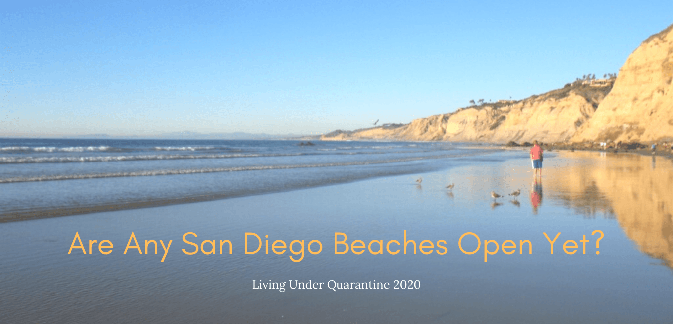 san diego beaches open featured image