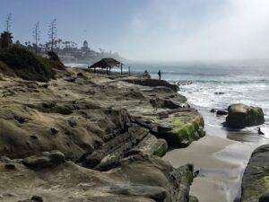 Windansea beach webcam tidal shelf waves ocean