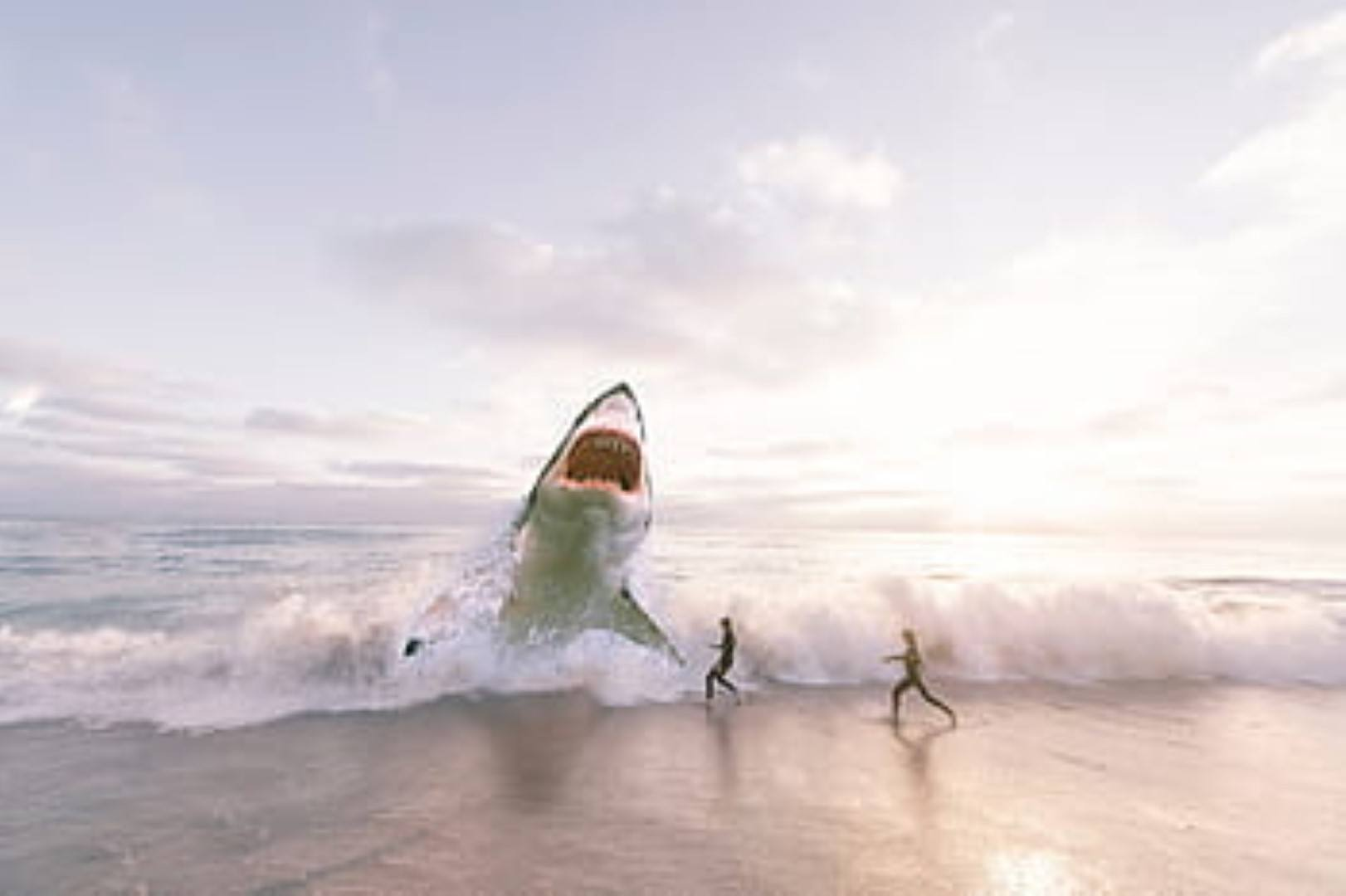 image Great white shark wave
