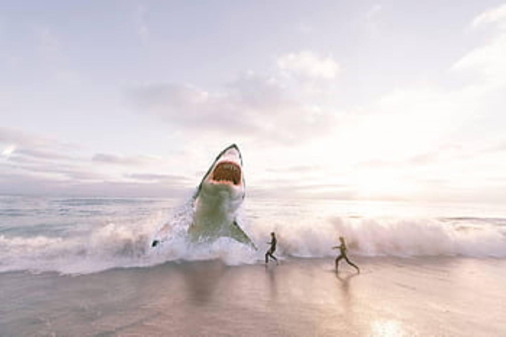 image Great white shark wave