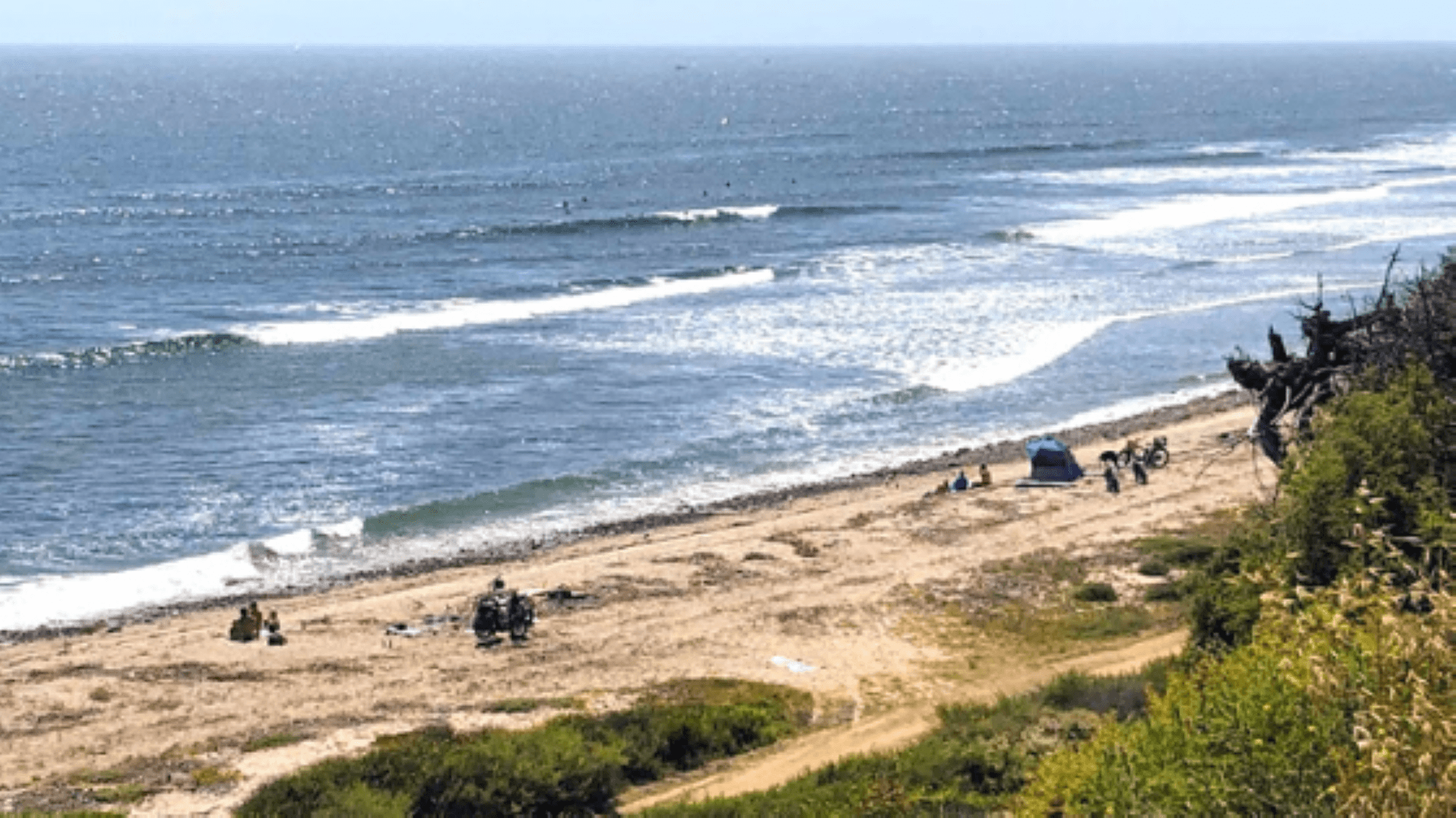 Middles trestles san onofre state beach shark sightings