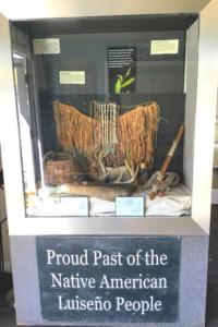 AHLDC Luiseno display case willow grass skirt