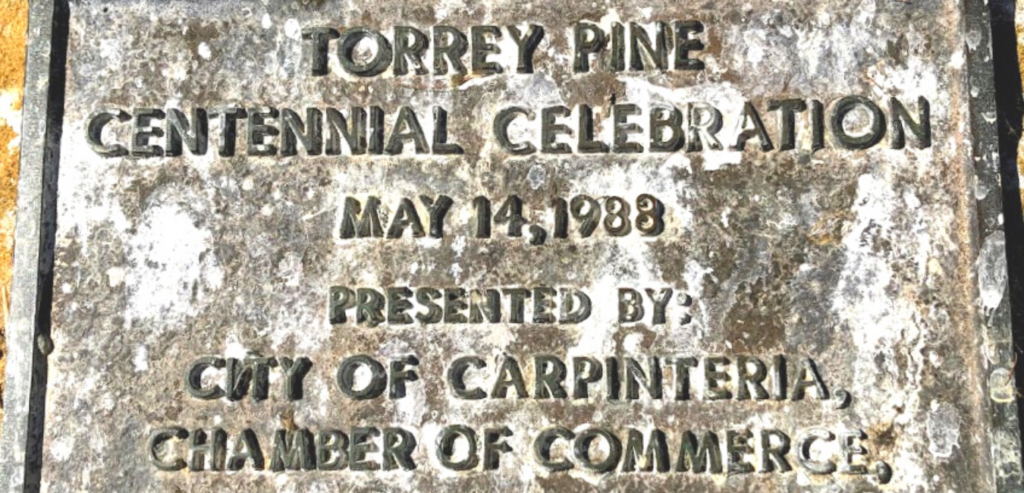 Centennial placard carpinteria wardholme torrey pine