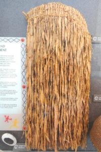 Kumeyaay Willow Skirt native uses native plants