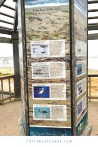 estuary observation deck ocean beach park lompoc CA