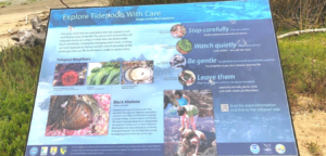 ocean beach park tidepool sign lompcc ca