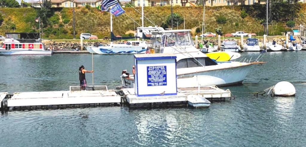 Oceanside Bait company oceanside harbor
