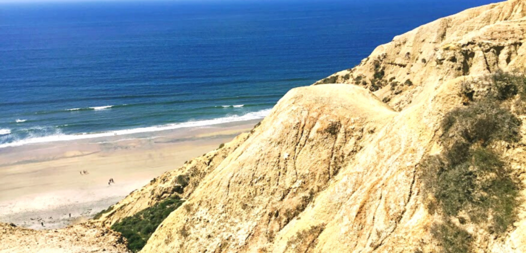 Blacks-Beach-Bluff-La-Jolla-San-Diego