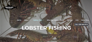 Boundless boat charters california spiny lobster fishing