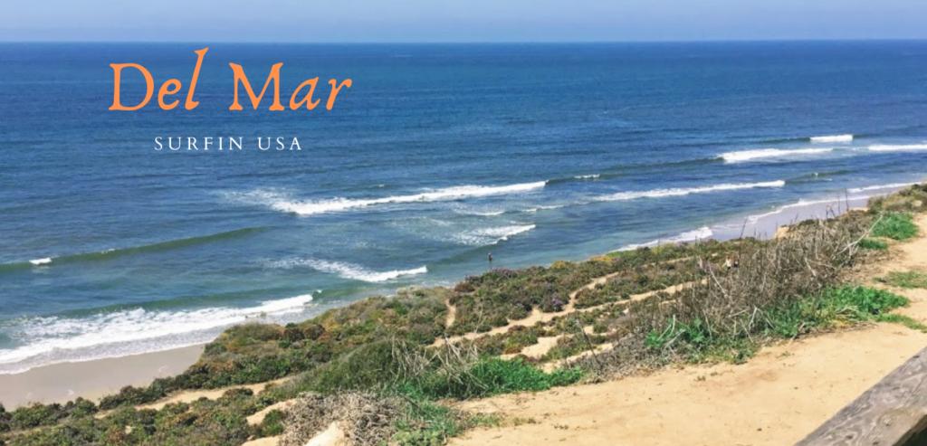 Del Mar Surfin USA bluff view ocean waves