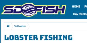 SDFish forum lobster fishing landing page