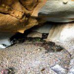 Back first cave la jolla underwater park