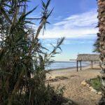 beach hut san onofre state beach
