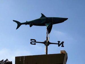 Great white shark windvane san onofre state beach