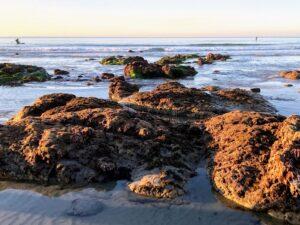 La Jolla Shores Beach La jolla underwater park