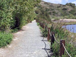lagoon walk 16 san elijo lagoon trail