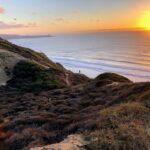 contemplation man ocean sunset
