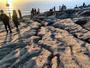 overlook bluffs blacks beach torrey pines state beach