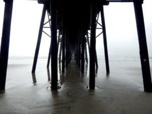oceanside pier underneath san diego salt water fishing