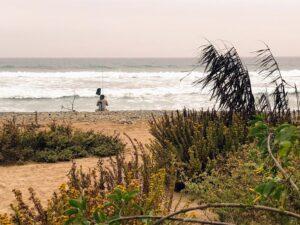 fishing trail 6 san onofre bluffs beach
