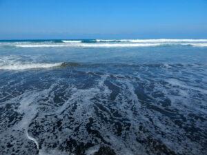 Oceanside harbor beach 2021 grunion run schedule