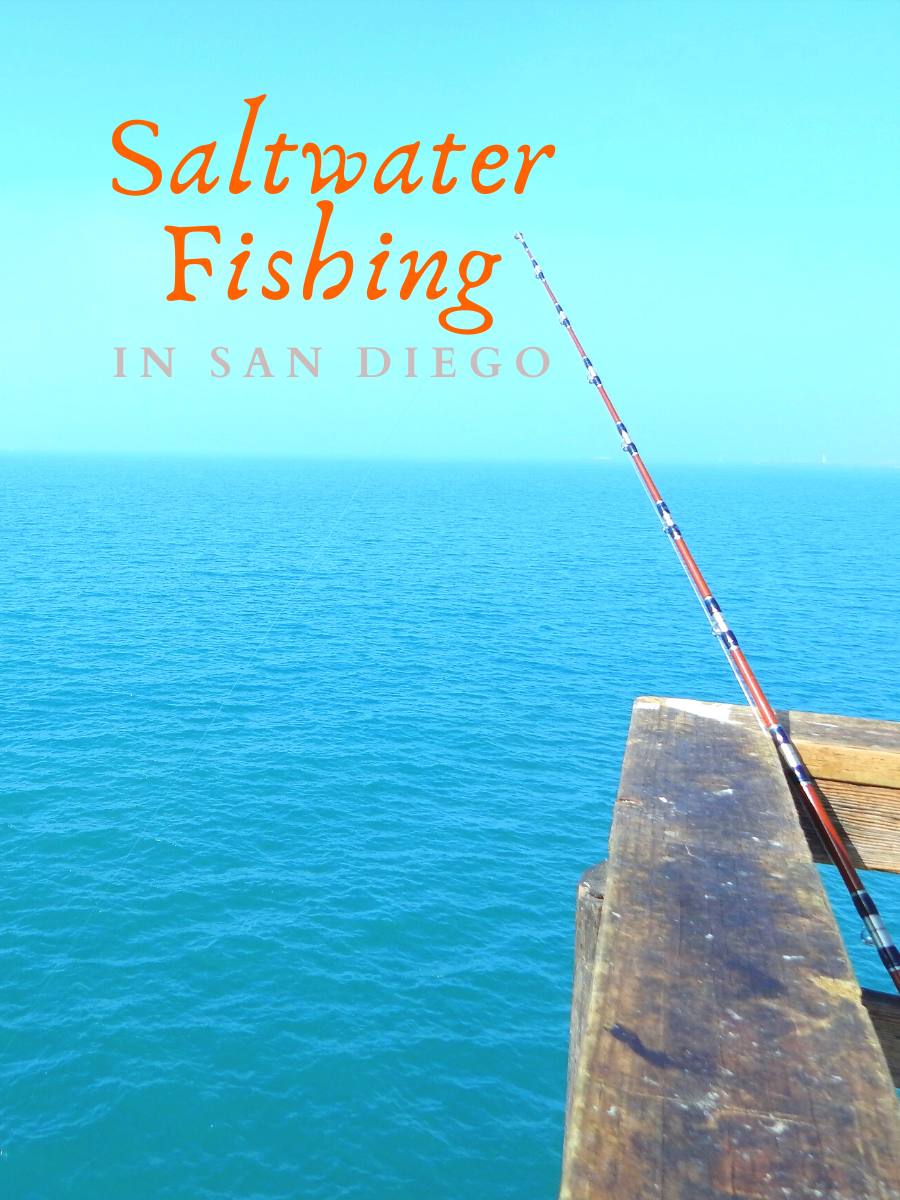 saltwater fishing san diego featured image