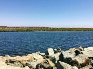 sweetwater river channe san diego bayl