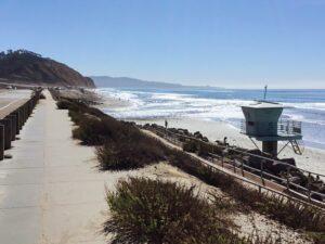 torrey pines state beach grunion run 2021