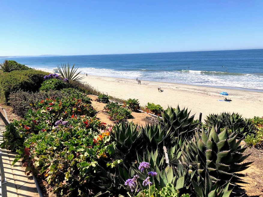 Robert Frazee Beach Carlsbad San Diego