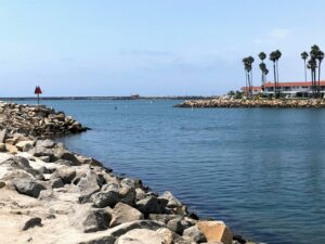 Oceanside Harbor Entrance jetty water palm trees