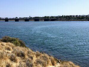 San Diego River East Water rocks plants
