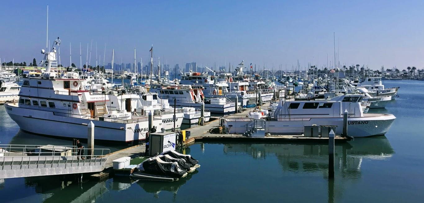 H & M landing fleet save california sportfishing