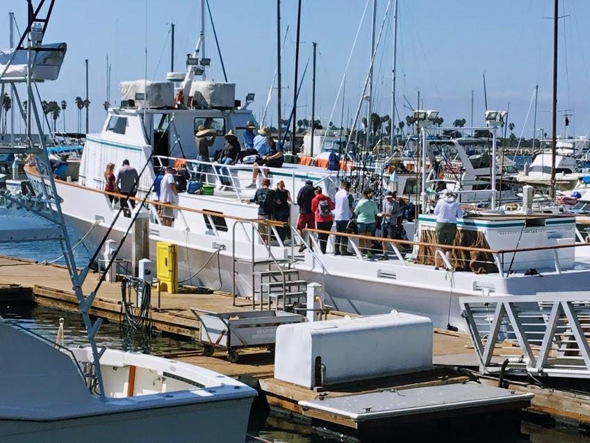 New seaforth sportfishing vessel 2018